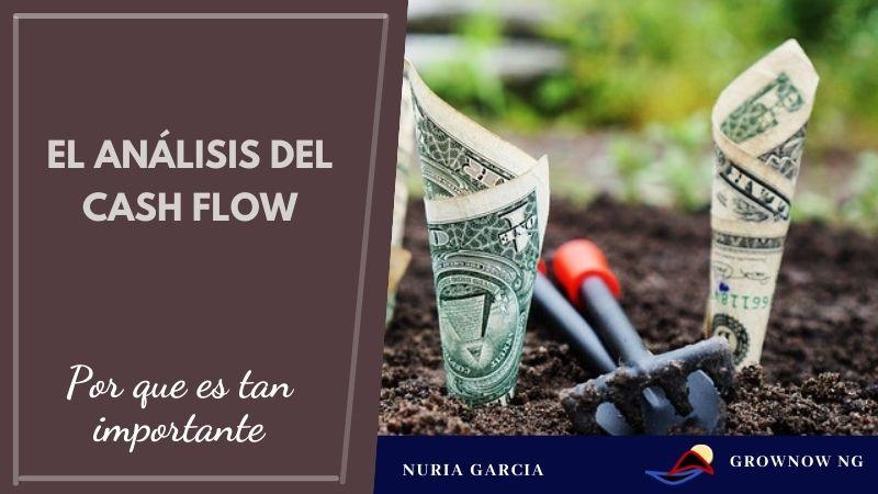 ¿Por qué es tan importante el análisis del Cash Flow?